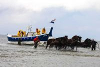 Paardenreddingsboot1
